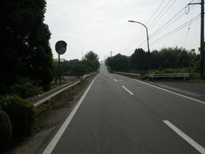 Rimg9333