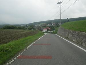 Rimg4995